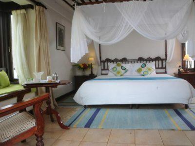 Photo of Jacaranda Special Rate 🤩